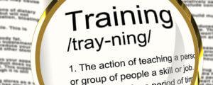 Buffalo Training